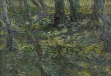 Vincent van Gogh, « Sous-bois », juillet 1889. Huile sur toile, 49 x 64,3 cm Van Gogh Museum, Amsterdam (Vincent van Gogh Foundation)