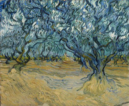 Vincent van Gogh, L'Oliveraie, Saint-Rémy, 1889. Huile sur toile, 53,5 x 64,5 cm. Collection particulière